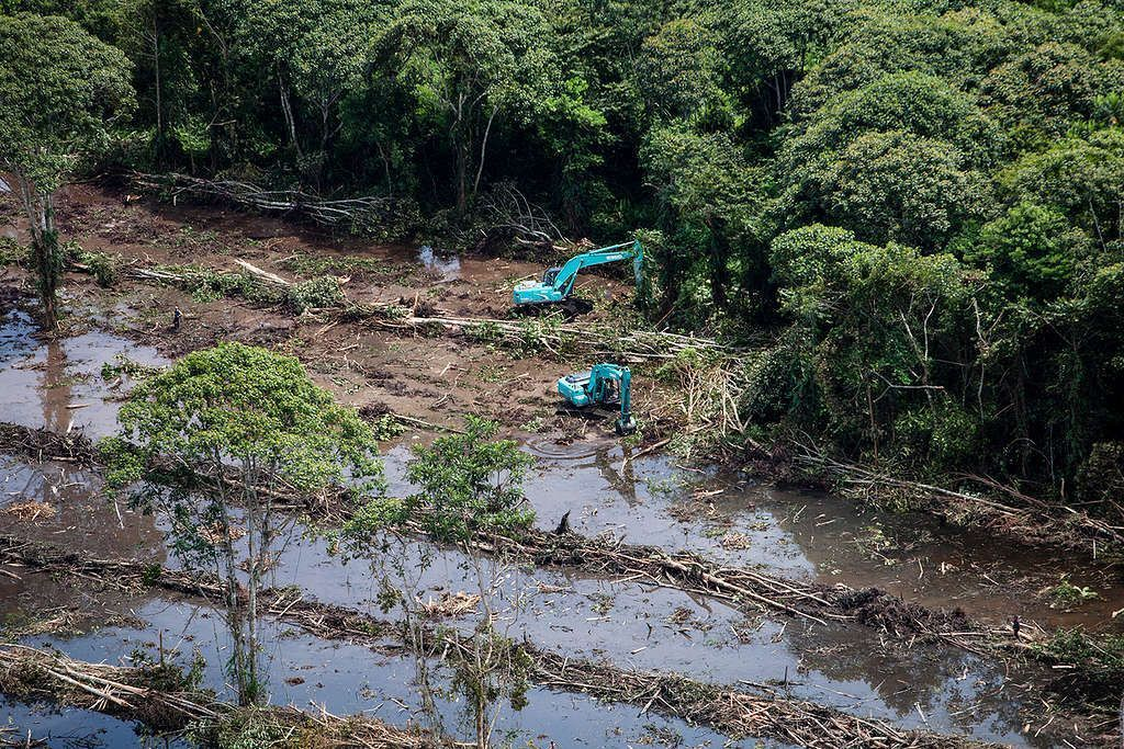 Deforestation for Palm Oil by Bumitama in Indonesia